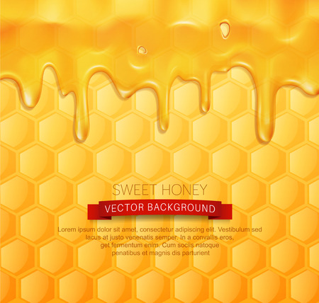 vector background with honeycombs and honey Иллюстрация