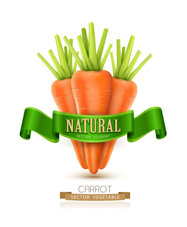 tuber: vector three carrots isolated on white background with green ribbon Illustration
