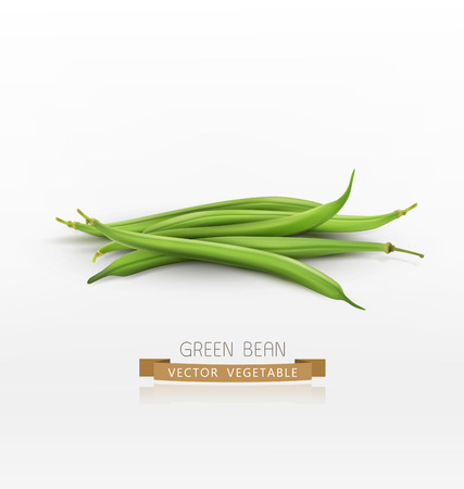 vector bunch of green beans isolated on white background Illustration