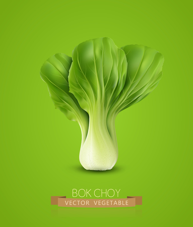head shot: vector Pok Choy isolated, on  green background