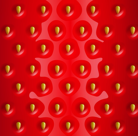 rinds: Vector strawberry realistic background