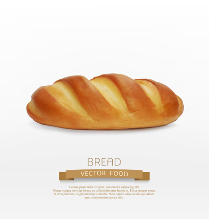 crusty: vector bread (loaf) isolated on white background