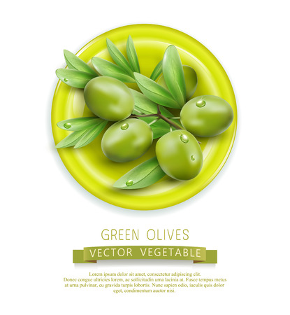 mediterranean diet: Vector branch with green olives lying on a plate, isolated on white background Illustration