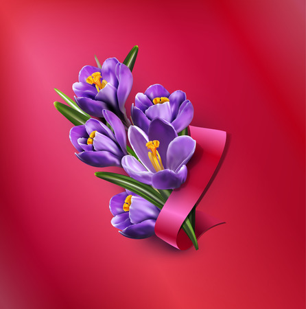 Vector greeting card with blue crocuses, red ribbon and place for text on a purple background Illustration