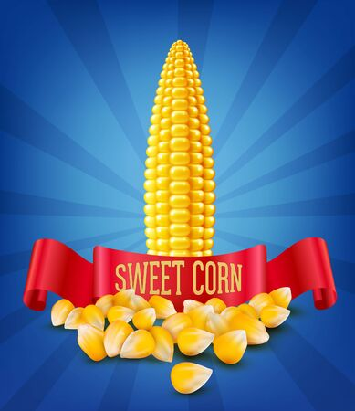 vector grains and cobs of corn and red ribbon on blue background