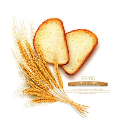 vector  slices of sliced bread (loaf) lying isolation on the white background Illustration