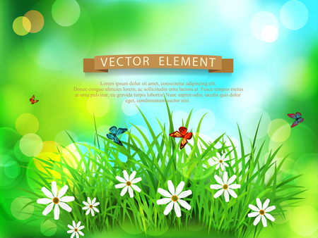 Vector element for design. Green grass with white flowers, butterflies on a  spring, meadow, blurred background Illustration