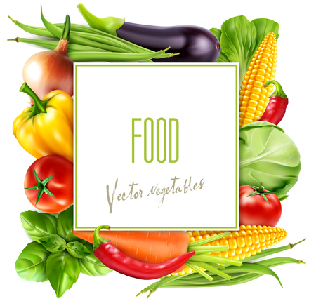 Vector menu pattern with vegetables (carrots, cabbage, basil, tomato, eggplant, corn, bok choy) with a square card for text Illustration