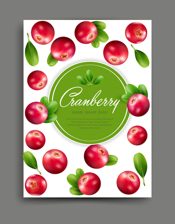 arandanos rojos: Vector lliustration with realistic cranberry isolated with frame and place for text Element for design, business, advertising, promotion of products, natural juices, cosmetics, food. Template for flyer, brochure, menu, packaging, banner.