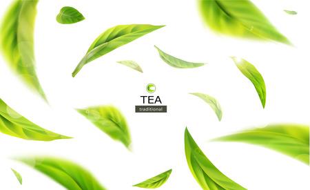 Illustrazione 3d vettoriale con foglie di tè verde in movimento su uno sfondo bianco. Elemento per la progettazione, la pubblicità, l'imballaggio di prodotti da tè