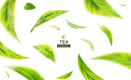 Vector 3d illustration with green tea leaves in motion on a white background. Element for design, advertising, packaging of tea products Stock Illustratie