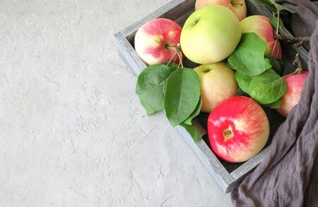 Autumn harvest: ripe, fragrant red-green apples in a wooden, gray box on gray stucco background. Top view. Food concept.