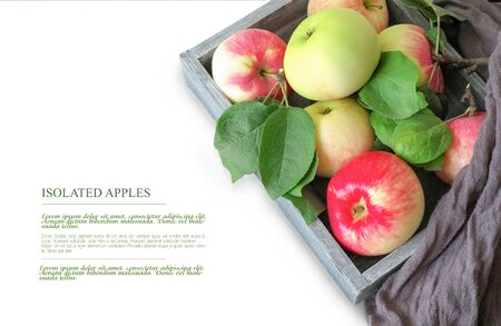 Food concept. Template for design. Isolated apples in a wooden box, on a white background