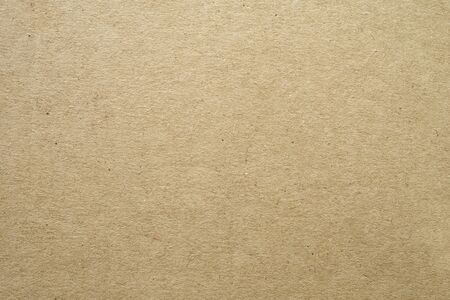 Craft Paper Texture. Textured cardboard background. Close-up. Template for design