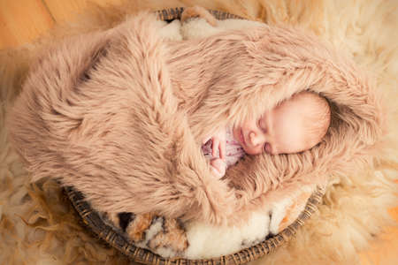 One month old baby sleep in fury cover Stock Photo