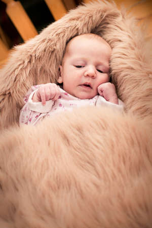 One month old baby looking and lying in fury cover Stock Photo