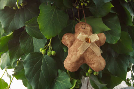 Gingerbread man  handmade toy on design green New Year tree isolated on white background photo