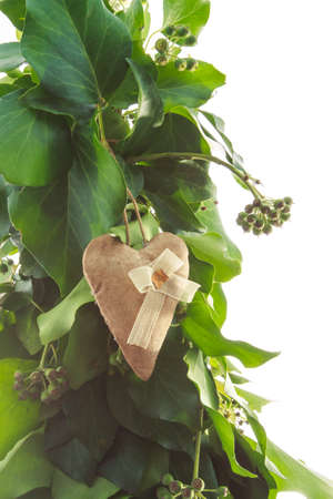Gingerbread heart handmade toy on design green New Year tree isolated on white background photo