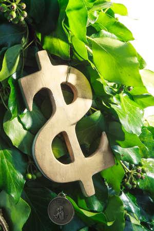handmade golden dollar symbol hanging  on design green New Year tree isolated on white background photo