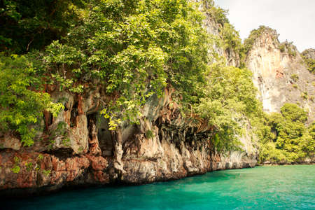 greenery: cliffy island covered with greenery in azure sea water