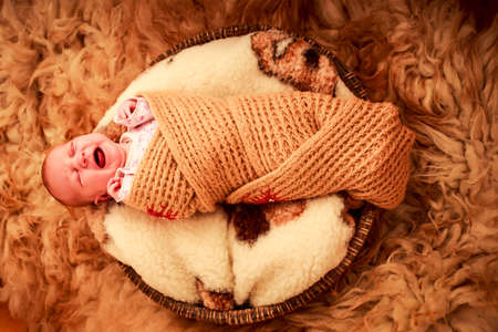 fell: newborn baby cries lying on round woolen pillow and sheep fell covered in knitted scarf