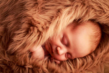 cheek: closeup portrait of newborn baby sleeping face with hand under cheek covered with brown sheeps Stock Photo