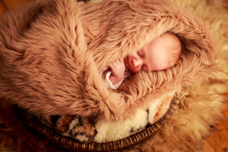 portrait of newborn baby sleeping face with small hands over brown sheep fell Stock Photo