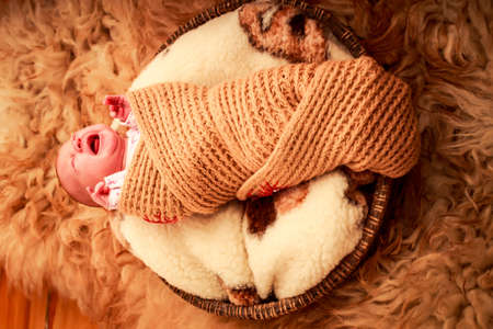 cries: newborn baby cries lying on round woolen pillow and sheep fell covered in knitted scarf