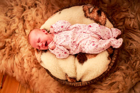 wry: baby sleeps and makes wry face on round woolen pillow and sheeps