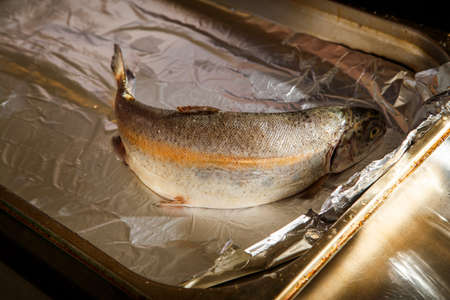 closeup raw whole trout lies on parchment for baking foil on metal tray