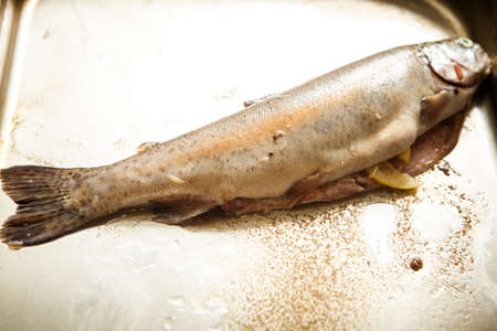 raw whole trout with oil lies on metal tray