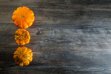 top view on assorted decorative yellow pumpkins of different sizes in row on dark wooden table background 写真素材