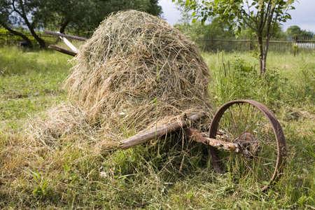 handcart: Haystack on the wooden handcart