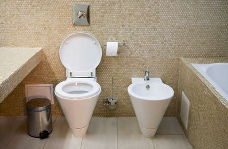 Interior of toilet with lavatory pan and bidet   photo