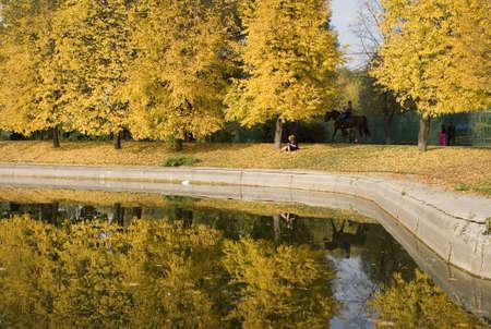 descriptive: City park in the late of autumn   Stock Photo