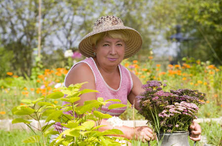 maintains: Old woman maintains a garden   Stock Photo