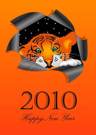 2010 New Years symbol tiger Vector