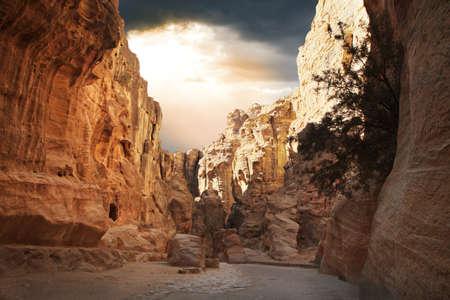 siq: Fantastic beauty of the Siq gorge in Petra, Jordan