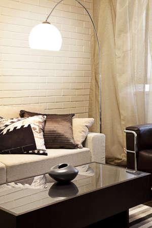 Interior shot of a modern living room