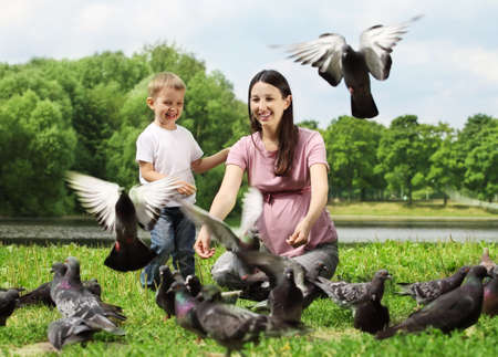 Pregnant woman with her son feeding pigeons in a park Stock Photo - 10417687