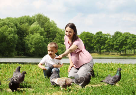 Pregnant woman with her son feeding pigeons in a park  Stock Photo