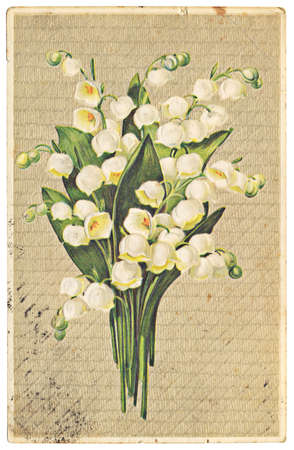 vintage postcard with illustration of lily of the valley 版權商用圖片