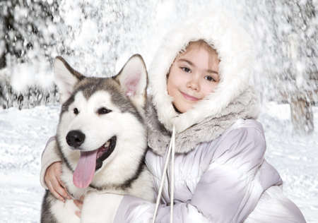 five month old: Five month old malamute puppy with a little girl Stock Photo