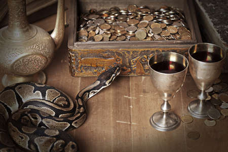 Vintage still life with Royal Python snake Stock Photo - 16645902