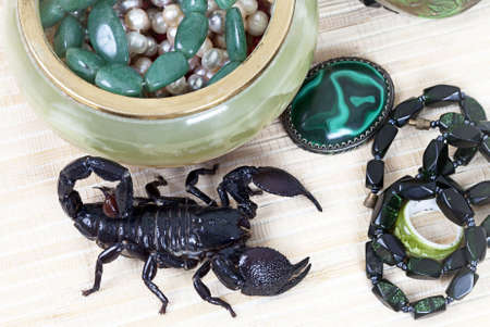 imperator: Emperor Scorpion with onyx jewelry box, malachite brooch and black necklace