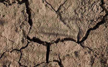 insipid: Full frame of arid cracked earth