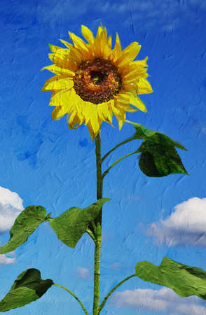 nature one painted: Beautiful sunflower against blue sky. Artistic oil painting style with texture  Stock Photo