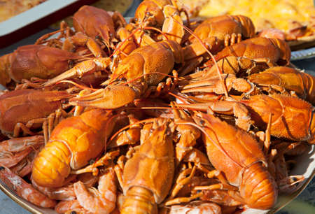 fluvial: Dish of tasty boiled crawfish piled in a heap, close-up Stock Photo