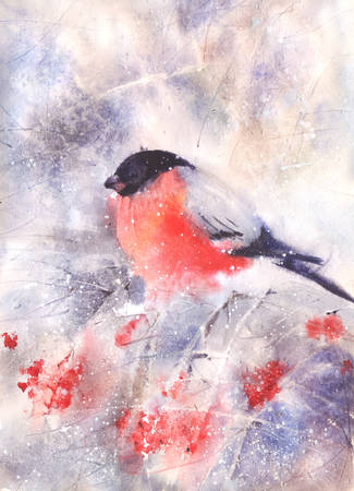 Water color drawing of a bullfinch sitting on a branch in winter. Wet-in-Wet watercolor technique