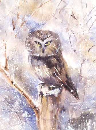 watercolor technique: Water color illustration of an eagle owl sitting on a branch in winter. Wet-in-Wet watercolor technique Stock Photo